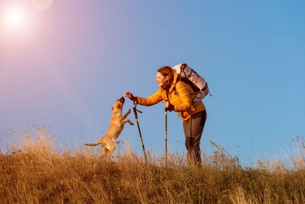 Dog-Friendly Hiking In Scottsdale Arizona Photo of man with dog